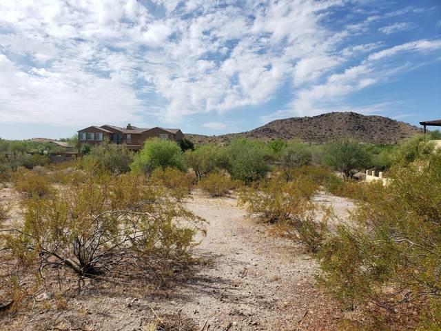 18365 W Porter Drive, Goodyear, AZ 85338 (MLS #6104715) :: Lucido Agency