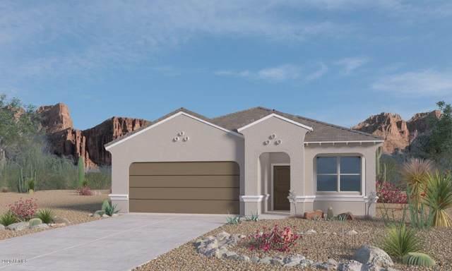 3039 S 78TH Lane, Phoenix, AZ 85043 (MLS #6104935) :: Klaus Team Real Estate Solutions