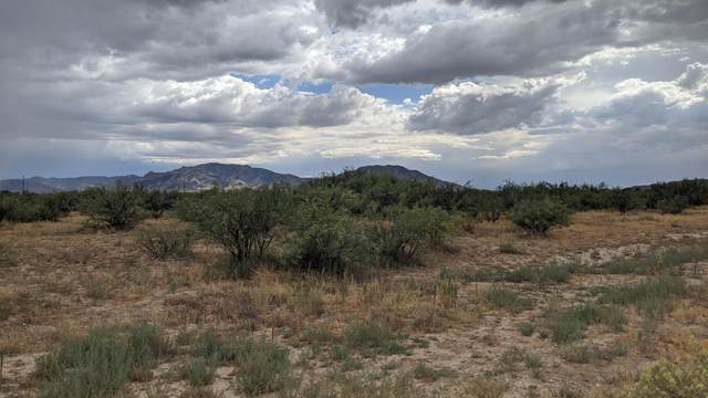 TBD W Vandorf Street, Cochise, AZ 85606 (MLS #6105000) :: Long Realty West Valley