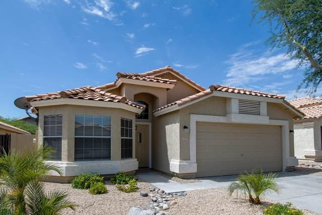 3229 E Brookwood Court, Phoenix, AZ 85048 (MLS #6105106) :: Yost Realty Group at RE/MAX Casa Grande