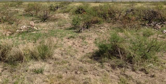 Tbd 2 N Rascal Ranch Road, Huachuca City, AZ 85616 (MLS #6105329) :: The Results Group