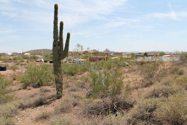 101 W Briles Road, Phoenix, AZ 85085 (MLS #6105362) :: The Laughton Team