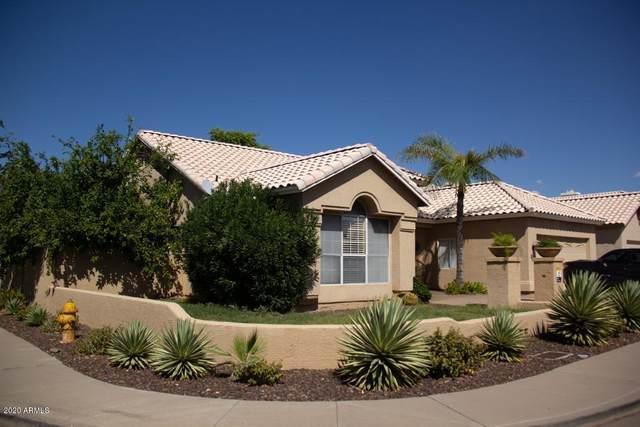 3324 E Oraibi Drive, Phoenix, AZ 85050 (MLS #6105375) :: Klaus Team Real Estate Solutions