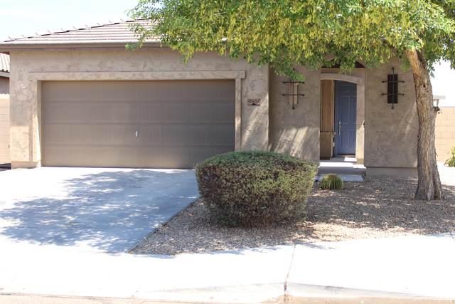 10432 W Hammond Lane, Tolleson, AZ 85353 (MLS #6105794) :: Klaus Team Real Estate Solutions