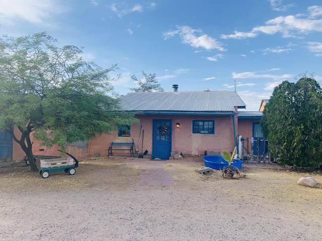 13560 N Ringer Road, Florence, AZ 85132 (MLS #6105822) :: Brett Tanner Home Selling Team