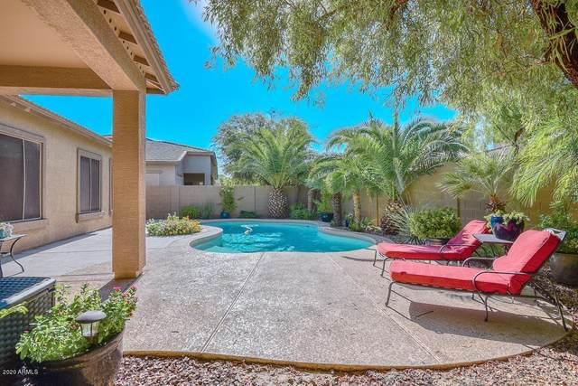 3435 W Leisure Lane, Phoenix, AZ 85086 (MLS #6105846) :: Conway Real Estate