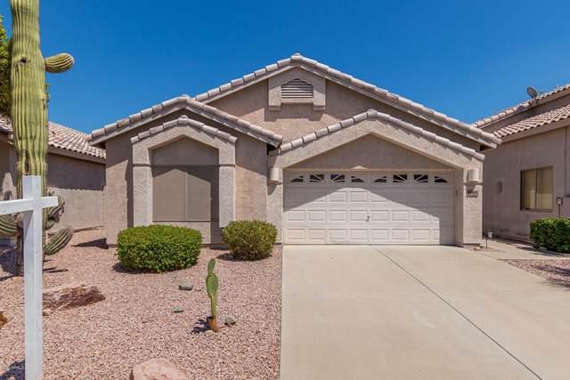 15101 N 90TH Drive, Peoria, AZ 85381 (MLS #6105962) :: Kepple Real Estate Group