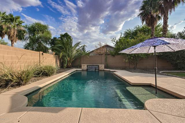 3397 E Flamingo Court, Gilbert, AZ 85297 (MLS #6105990) :: Klaus Team Real Estate Solutions