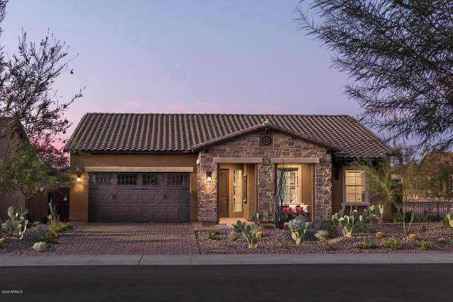 9244 W Louise Drive, Peoria, AZ 85383 (MLS #6106141) :: Klaus Team Real Estate Solutions