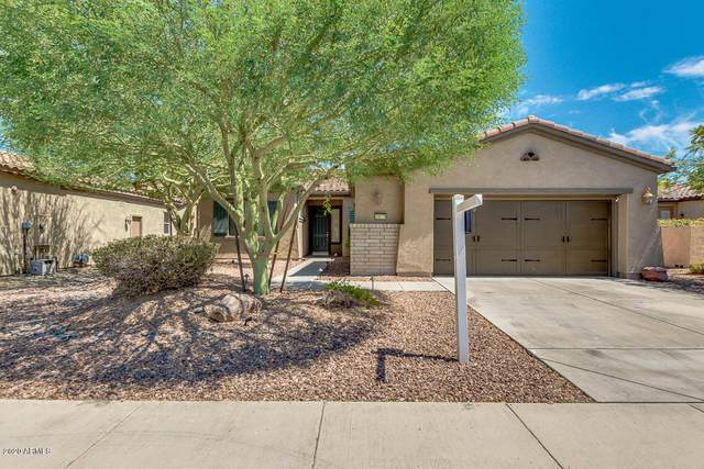 28239 N 123RD Lane, Peoria, AZ 85383 (MLS #6106161) :: My Home Group