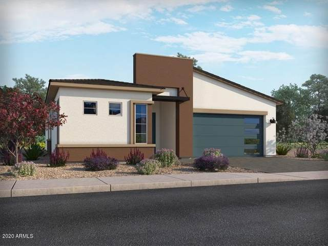 5120 S Springs Place, Chandler, AZ 85249 (MLS #6106178) :: Klaus Team Real Estate Solutions