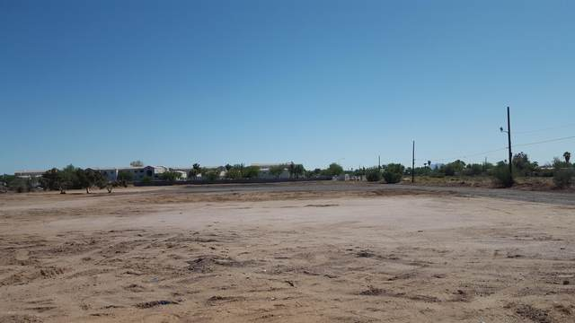 9705 E Main Street, Mesa, AZ 85207 (MLS #6106234) :: Long Realty West Valley