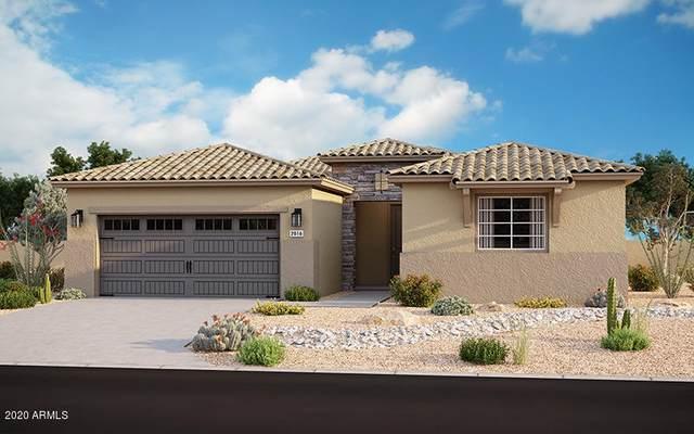 17244 W Butler Avenue, Waddell, AZ 85355 (MLS #6106397) :: Brett Tanner Home Selling Team