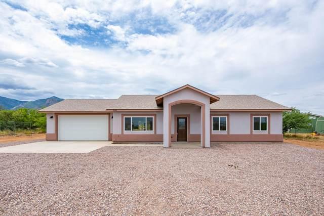 6040 S Tortuga Lane, Hereford, AZ 85615 (MLS #6106426) :: Klaus Team Real Estate Solutions