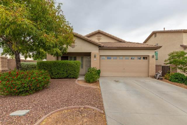 15341 N 146TH Avenue, Surprise, AZ 85379 (MLS #6106451) :: Arizona Home Group