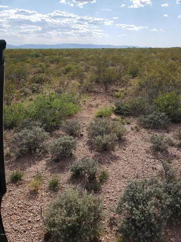 xxxx Tbd, Douglas, AZ 85607 (MLS #6106482) :: Kepple Real Estate Group
