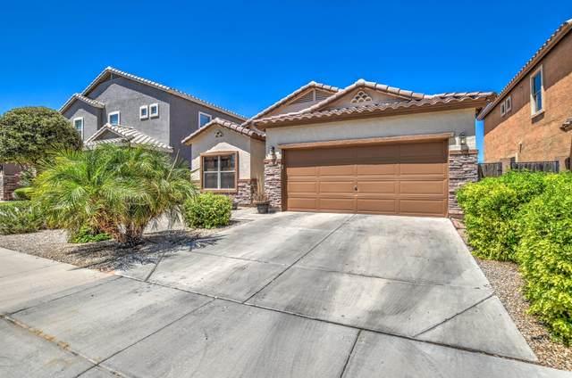 28742 N Desert Hills Drive, San Tan Valley, AZ 85143 (MLS #6106521) :: Klaus Team Real Estate Solutions