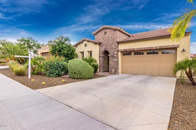 12955 W Hummingbird Terrace, Peoria, AZ 85383 (MLS #6106533) :: Klaus Team Real Estate Solutions