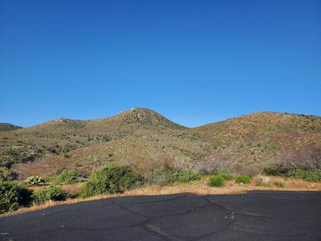 Lot 21 S San Carlos Drive, Globe, AZ 85501 (MLS #6106721) :: RE/MAX Desert Showcase