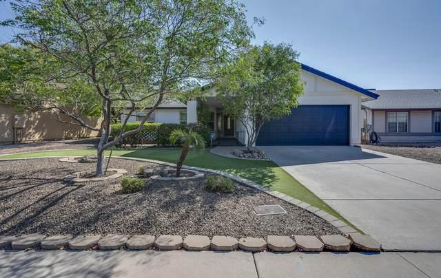 213 W Sequoia Drive, Phoenix, AZ 85027 (MLS #6106884) :: Brett Tanner Home Selling Team