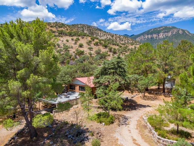 2684 E Carr Canyon Road, Hereford, AZ 85615 (MLS #6106899) :: Klaus Team Real Estate Solutions