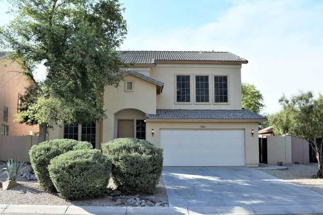 2826 E Pinto Valley Road, San Tan Valley, AZ 85143 (MLS #6106911) :: Klaus Team Real Estate Solutions