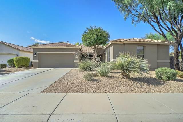 3523 W Buckhorn Trail, Phoenix, AZ 85083 (MLS #6106958) :: Klaus Team Real Estate Solutions