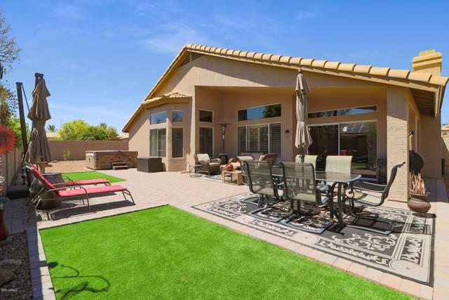 20292 N 108TH Lane, Sun City, AZ 85373 (MLS #6106963) :: The Daniel Montez Real Estate Group