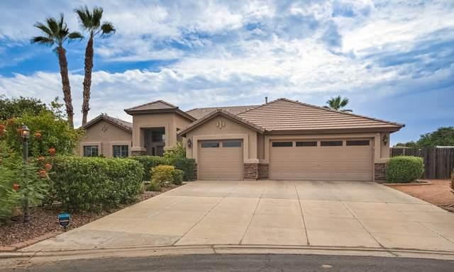 4304 E Fountain Circle, Mesa, AZ 85205 (MLS #6107068) :: Klaus Team Real Estate Solutions