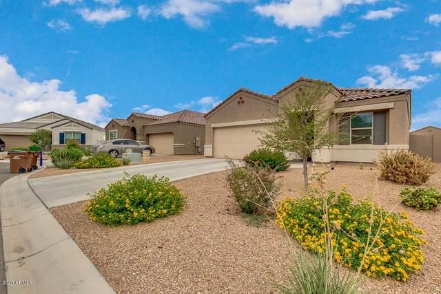 28904 N Selenite Lane, San Tan Valley, AZ 85143 (MLS #6107074) :: Klaus Team Real Estate Solutions
