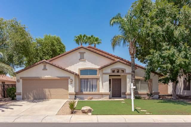 1046 E Bart Street, Gilbert, AZ 85295 (MLS #6107202) :: Arizona Home Group