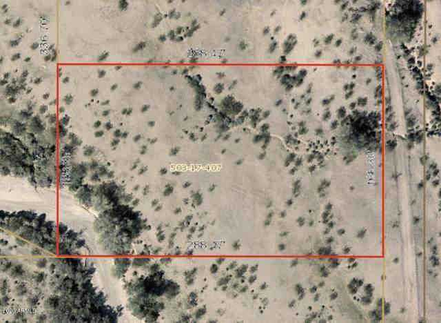 32XXX N 231st Avenue, Wittmann, AZ 85361 (MLS #6107445) :: The Laughton Team