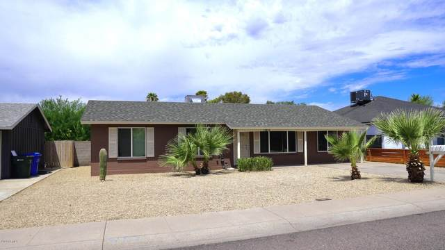 14842 N 38TH Street, Phoenix, AZ 85032 (MLS #6107549) :: Dave Fernandez Team | HomeSmart