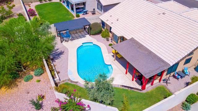 3039 E Verbena Drive, Phoenix, AZ 85048 (MLS #6107665) :: Klaus Team Real Estate Solutions