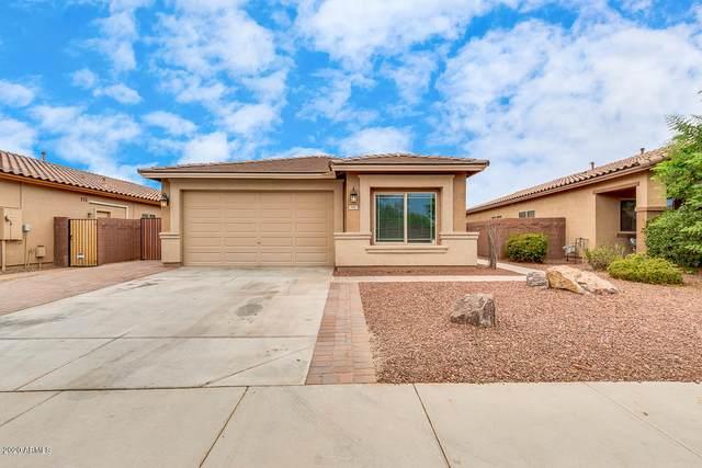 898 W Basswood Avenue, San Tan Valley, AZ 85140 (MLS #6107729) :: Klaus Team Real Estate Solutions