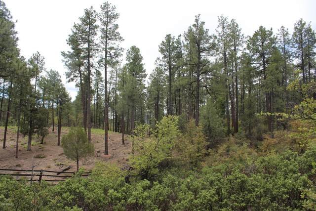3109 E Game Trail, Payson, AZ 85541 (MLS #6107738) :: RE/MAX Desert Showcase