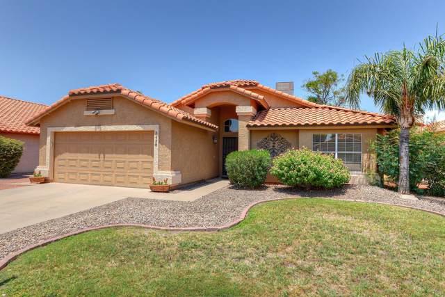 3438 E Sequoia Drive, Phoenix, AZ 85050 (MLS #6107920) :: Klaus Team Real Estate Solutions