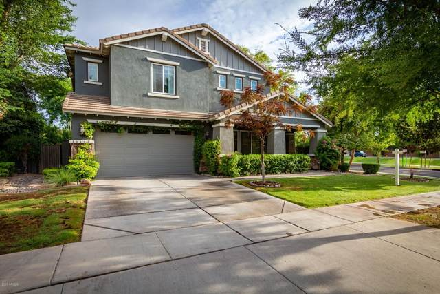 3435 E Comstock Drive, Gilbert, AZ 85296 (MLS #6107993) :: Klaus Team Real Estate Solutions