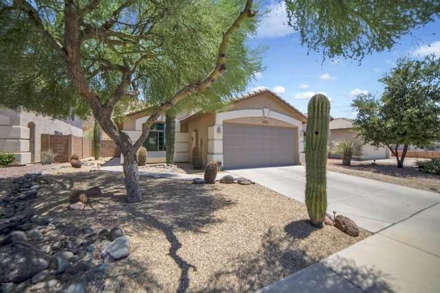 2228 E Heston Drive, Phoenix, AZ 85024 (MLS #6108130) :: Klaus Team Real Estate Solutions