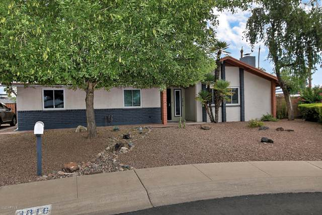 3816 W Garden Drive, Phoenix, AZ 85029 (MLS #6108264) :: Klaus Team Real Estate Solutions