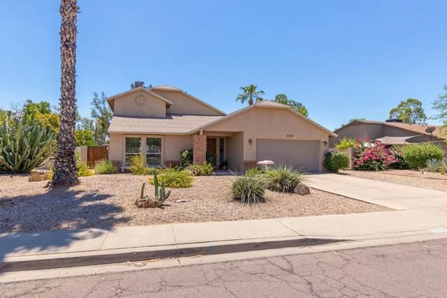 5333 E Wallace Avenue, Scottsdale, AZ 85254 (MLS #6108286) :: Klaus Team Real Estate Solutions