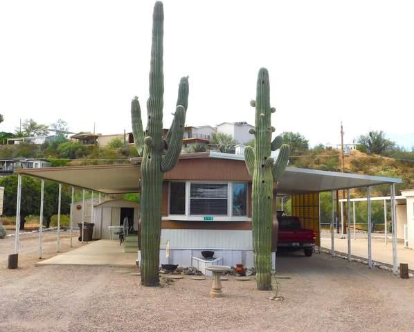 119 E Lynn Way, Queen Valley, AZ 85118 (MLS #6108303) :: Brett Tanner Home Selling Team