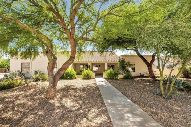 12005 S Appaloosa Drive, Phoenix, AZ 85044 (MLS #6108338) :: Kepple Real Estate Group