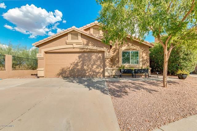 1731 E Blackhawk Drive, Phoenix, AZ 85024 (MLS #6108421) :: Klaus Team Real Estate Solutions