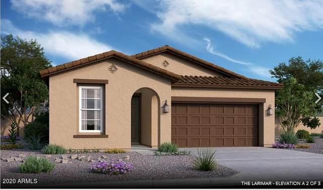 10839 W Grant Street, Avondale, AZ 85323 (MLS #6108444) :: Klaus Team Real Estate Solutions