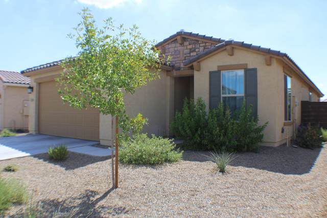 22516 N 95TH Drive, Peoria, AZ 85383 (MLS #6108491) :: Klaus Team Real Estate Solutions