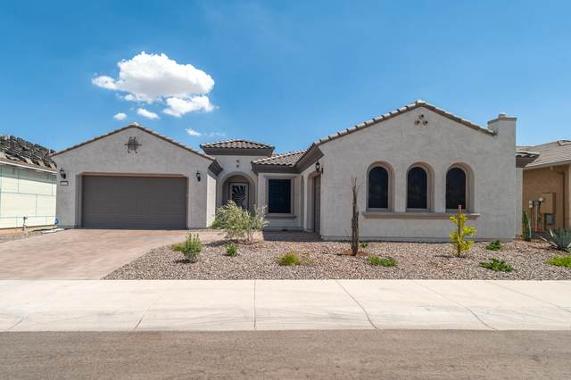 26231 W Maple Drive, Buckeye, AZ 85396 (MLS #6108604) :: Long Realty West Valley