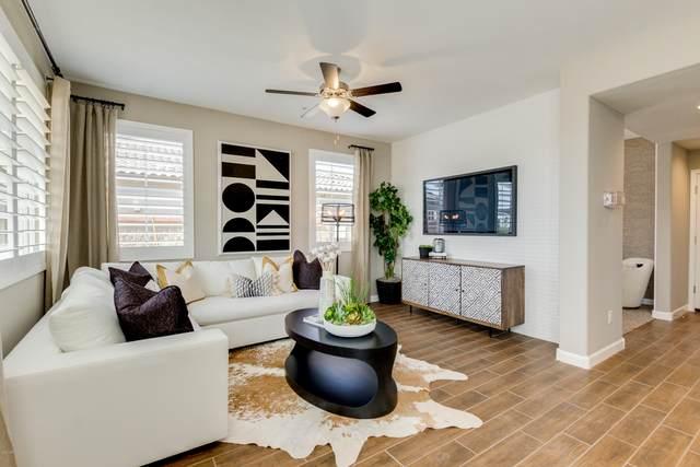 1255 N Arizona Avenue #1355, Chandler, AZ 85225 (MLS #6108651) :: Klaus Team Real Estate Solutions