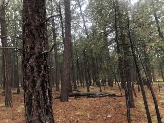 1063 State Route 260, Forest Lakes, AZ 85931 (MLS #6108669) :: neXGen Real Estate