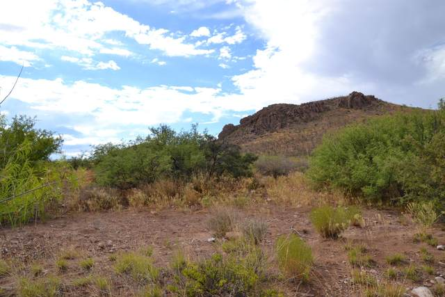 Tbd 24 AC E Get Lost Road, Douglas, AZ 85607 (MLS #6108807) :: Brett Tanner Home Selling Team